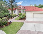 17204 Emerald Chase Drive, Tampa image