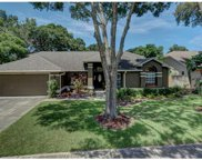 15114 Craggy Cliff Street, Tampa image