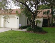 14766 Feather Cove Lane, Clearwater image