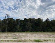 5153 Barcroft Lake Drive, Leland image