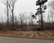 3101 Pawapi Lane Lot A, Williamston image