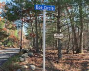 Stag  Circle, Charlestown image