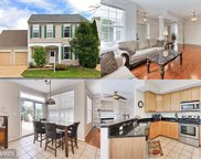 43250 DAY LILY TERRACE, Ashburn image