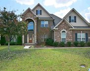 3009 Laurel Cove Way, Gurley image