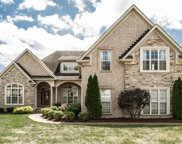 1051 Gadwall Circle, Hendersonville image