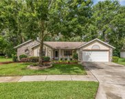 1070 Royal Oaks Drive, Apopka image