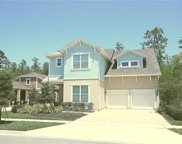 8748 Peachtree Park Court, Windermere image