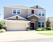 930 Berry Leaf Court, Apopka image
