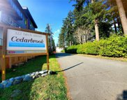 322 Birch  St Unit #209, Campbell River image