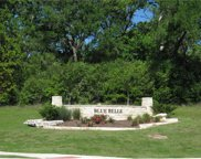2946 Blue Belle Dr, Other image