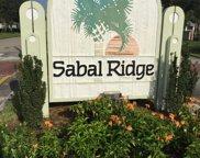 1101 Sabal Ridge Circle Unit #C, Palm Beach Gardens image