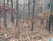 8720 Woodview Lane Unit LOT # 6-39, Pinson image