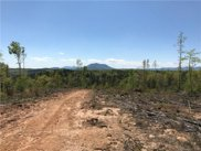 40 Ac Womack  Road, Mill Spring image