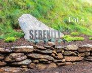 99999 Leisure Mountain  Road Unit #4, Asheville image