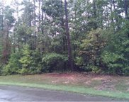 15242 Isle Pines Drive, Chesterfield image