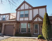 14788 Montgomery Drive, Orland Park image