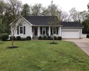 225 Turtle Rock Ct, Murfreesboro image