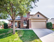 12201 Hedge Apple, Fort Worth image