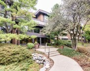 1409 Burr Oak Road Unit 207A, Hinsdale image
