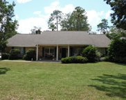 11920 GRAN CRIQUE CT South, Jacksonville image
