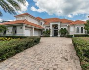 11409 Cranebrook Court, Windermere image