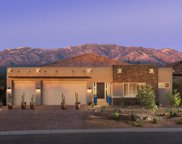 13250 N Velvetweed, Oro Valley image