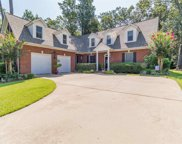 224 Pointe Overlook Drive, Chapin image