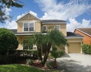 5014 Wise Bird Drive, Windermere image