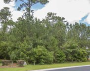 236 Low Country Loop, Murrells Inlet image