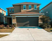 10420 Laguna Plains Drive, Riverview image