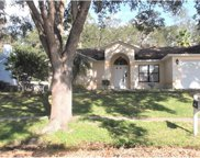 1083 Bent Way Court, Apopka image