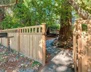 15231 Maplewild Ave SW, Burien image