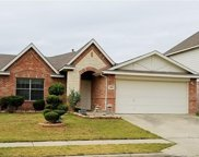 3908 Cane River, Fort Worth image