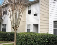 430 Southern Pecan Circle Unit 202, Winter Garden image