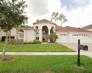 17318 Emerald Chase Drive, Tampa image