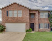 8721 Polo Drive, Fort Worth image