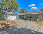 15405 Woodcastle Place, Tampa image