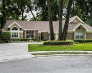 2071 Lake Todd Court, Apopka image
