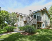 15503 CHESTNUT TREE COURT, Mineral image