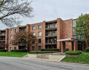 1415 East Central Road Unit 216B, Arlington Heights image