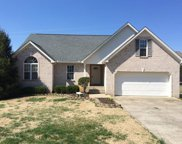 1825 Portview Drive, Spring Hill image