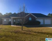 145 Co Rd 951, Clanton image