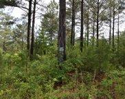 LT 50 Pinehurst, Blairsville image