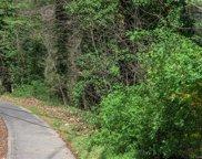 391 Kenilworth  Road, Asheville image
