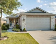 1251 Troon Drive, Frisco image