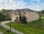 9218 European Olive Way, Riverview image