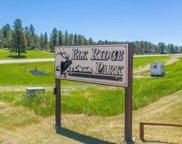 12070 Big Pine Road, Custer image