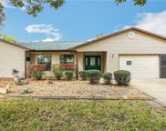 1037 Scotch Pine Court, Leesburg image