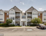 2443 BLUE SPRING COURT Unit #104, Odenton image