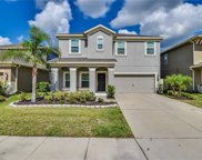 7996 Pleasant Pine Circle, Winter Park image